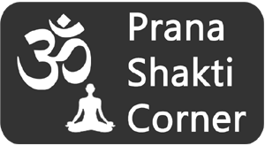 PranaShaktiCorner